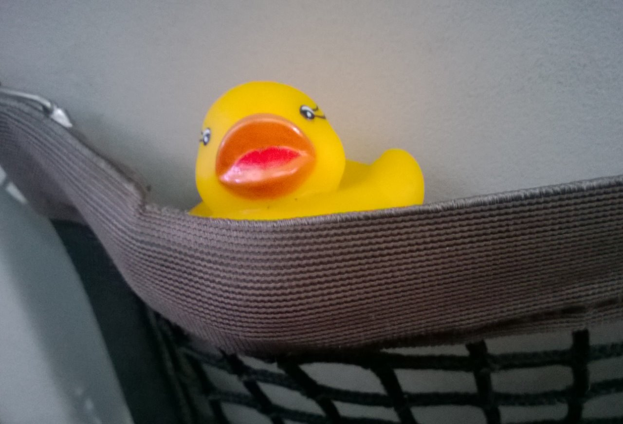 Ducky on his way to Peru